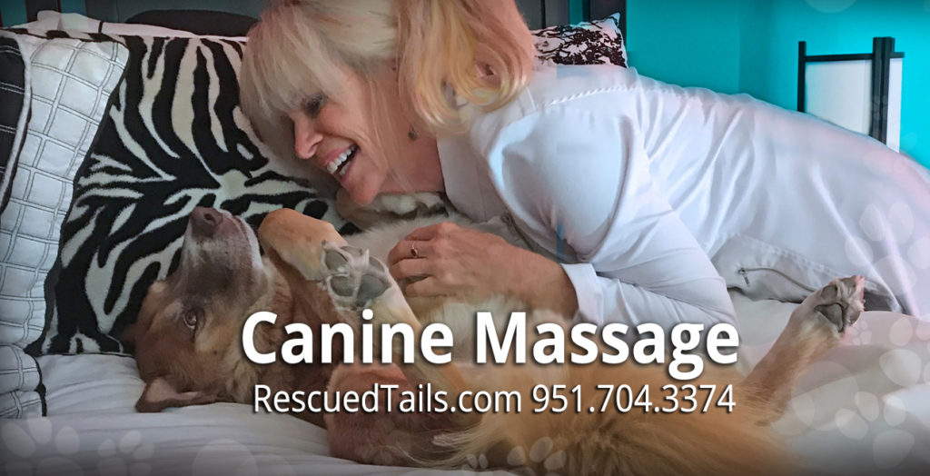 Rescue Tails Canine Massage Therapy