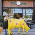 On the Mark Polka Dot Cow