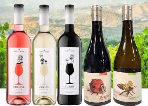 Bouschet Spanish Wines