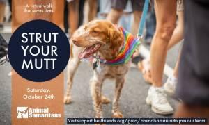 Strut Your Mutt Animal Samaritans