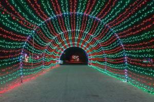 Tunnel of Lights Wildlights
